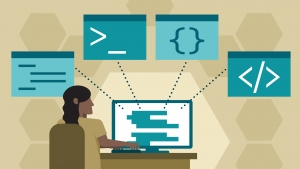 Programming vs Web Development